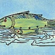 Piscis Australis, 1482 Poster