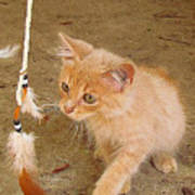 Play Time With Kitty Poster