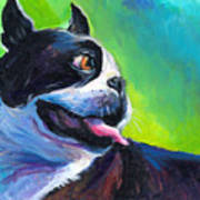 Playful Boston Terrier Poster by Svetlana Novikova