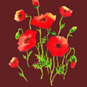 Playful Poppy Flowers Poster