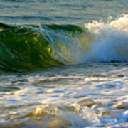 Playful Surf Poster