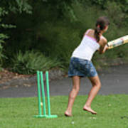 Playing Cricket Poster