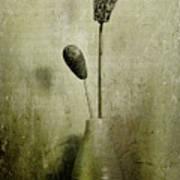 Pods In A Vase Poster
