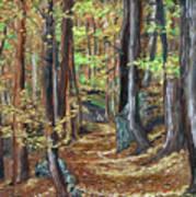 Podzim V Lese Po Pesine Behaj Bezci Poster