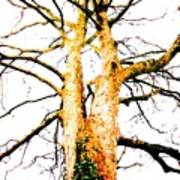 Pointillised Tree Poster