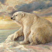 Polar Bear Rests On The Ice - Arctic Alaska Poster