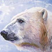 Polar Blue Poster