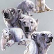Arctic King Poster