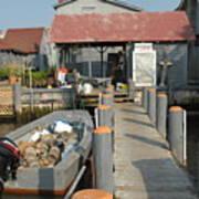 Pollys Dock 7 Poster