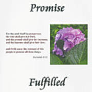 Promise Fulfilled Poster
