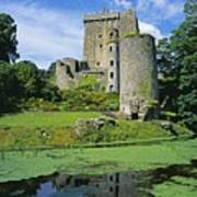 Pond In Front Of A Castle, Blarney Poster