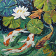 Pond Swimmers Koi Poster