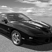 Pontiac Trans Am Ram Air In Black And White Poster
