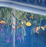 Pool Garden Poster