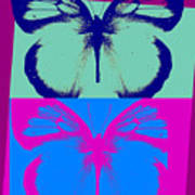 Pop Art Morphosis Poster