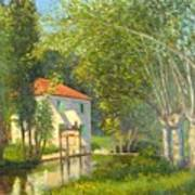 Poplars And Stream Gascony France Poster