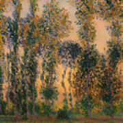 Poplars At Giverny - Sunrise Poster