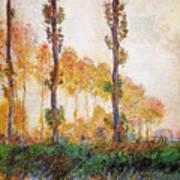 Poplars, Autumn Poster