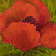 Poppies Diptych A Poster by Rita Bentley