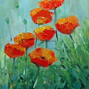 Poppies For Sally Poster