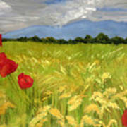 Poppies In A Wheat Field Poster