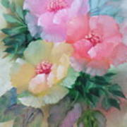 Poppies In Pastel Colors Poster