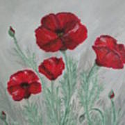 Poppies In The Mist Poster