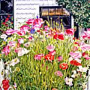 Poppies On Niagara Street Poster by David Lloyd Glover