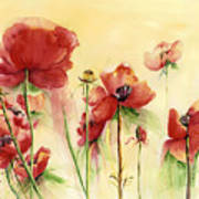 Poppies On Parade Poster