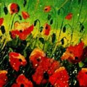 Poppies Poppies  Poster