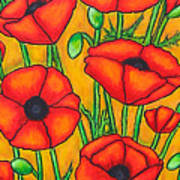 Poppies Under The Tuscan Sun Poster