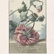 Poppies, Willem Van Leen, 1804 Poster