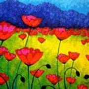 Poppy Cluster Poster