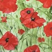 Poppy Field 1 Poster