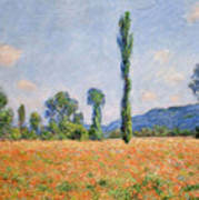 Poppy Field, Giverny Poster