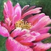Poppy Melody Poster