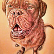 Portrait Drawing Of A Dog Poster