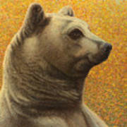 Portrait Of A Bear Poster