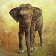 Portrait Of An Elephant Digital Painting With Detailed Texture Poster