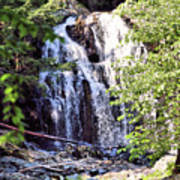 Portrait Of Houston Brook Falls Poster