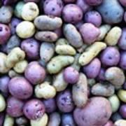 Potato Fest Poster