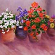 Pots Of Flowers Poster