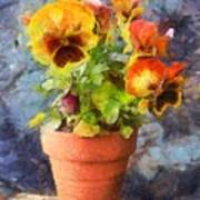 Potted Pansy Pencil Poster
