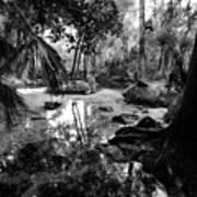 Precolumbian Florida Poster