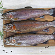 Preparing Trout For Dinner  Poster