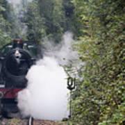 Preserved Steam Locomotive  Poster