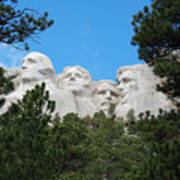 Presidents Of Mount Rushmore Framed By South Dakota Forest Trees Poster