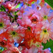 Pretty Petals Poster