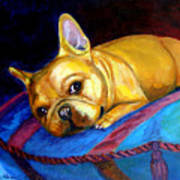 Princess And Her Pillow French Bulldog Poster