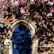 Princeton University Door And Magnolia Poster